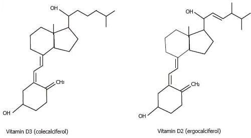 Tutti i segreti della Vitamina D