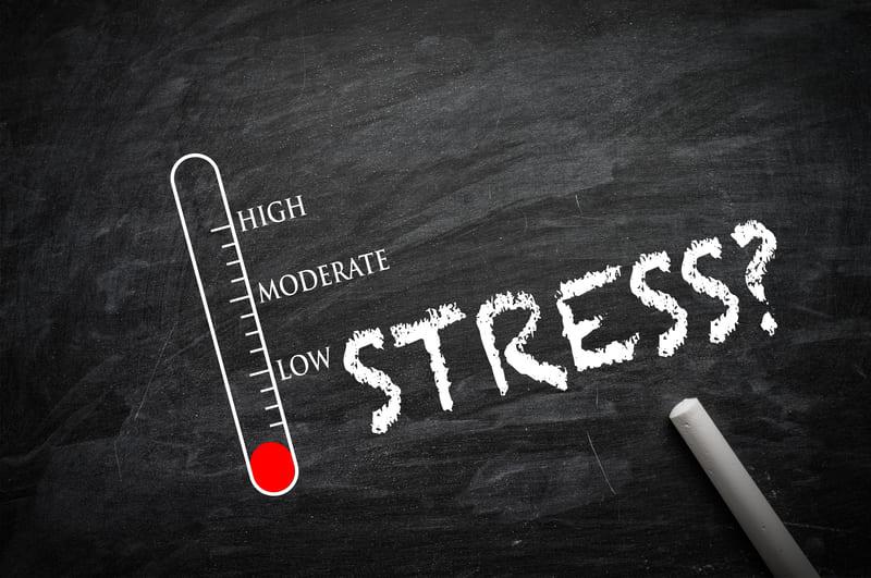 Read more about the article Stress e difese immunitarie, che legame c'è tra loro?